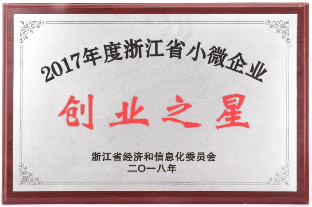 2017年度浙江省小微企业